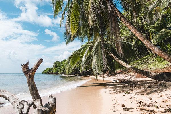 Le isole vicino Koh Samui